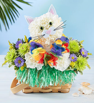 Tropical Party Kitty A Party in a Basket! in Gainesville, FL | PRANGE'S FLORIST