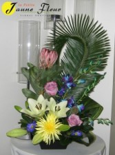 Tropical-Protea Delight