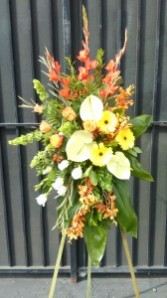 TROPICAL SPRAY Funeral Flowers