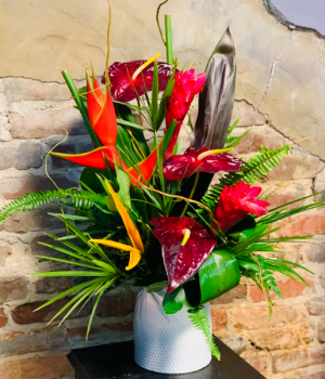 Tropical Sunset  Tropical  in Tampa, FL | BAY BOUQUET FLORAL STUDIO
