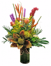 Tropical Sunset Tropical Cut flowers