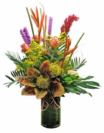 Tropical Sunset Tropical Cut flowers