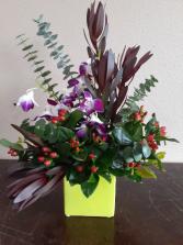Tropical Surprise Mixed arrangement