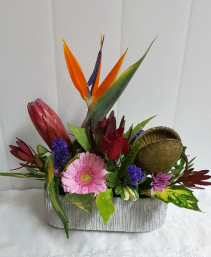 Tropical-The Charissa designed in a lovely ceramic planter