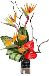 TROPICAL TREASURES ARRANGEMENT