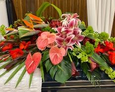 Tropical Tribute
