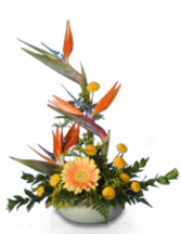 Tropical Tribute  Tropical arrangement