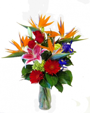Tropical Vacation Tropical Arrangmenet Pre-Order 3 day advance in Colorado Springs, CO | Enchanted Florist II