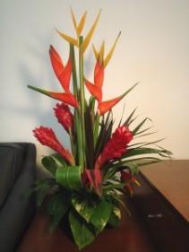 Tropics for You! Designers Choice Tropical arrangement