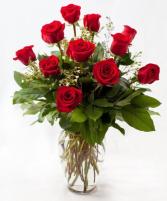 True Romance 1 Dozen Roses