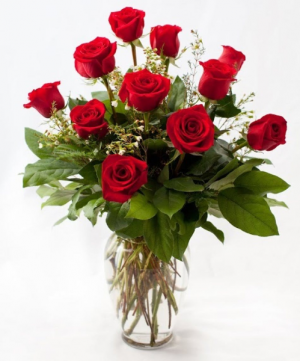 True Romance 1 Dozen Roses in Highmore, SD | Amber Waves Floral & Gifts