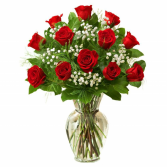 True Love Red Roses