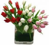 Treasured Tulips Arrangement