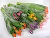 Tulip Bouqet