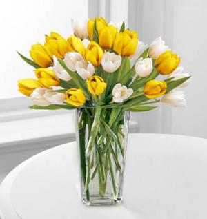 20 Tulip Bouquet   in Coral Gables, FL | FLOWERS AT THE GABLES