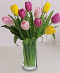 Tulip Bouquet Arrangement