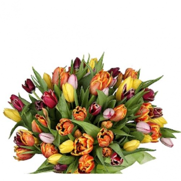 Tulip  Bouquet Hand Tied Bouquet