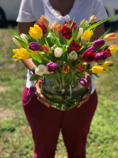 Tulip Bubble Vase Arrangement