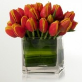 Tulip Cube Arrangement