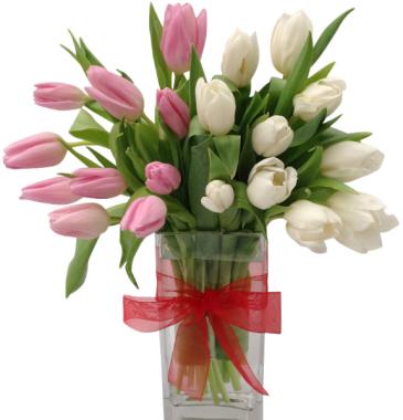 Tulip Duet Vase Arrangement