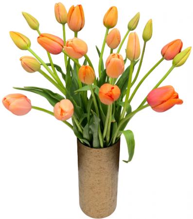 Tulip Duo Vase Arrangement