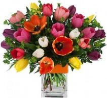 Tulip Explosion Vase Arrangement