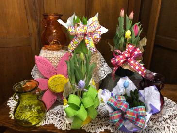 Tulip & Hyacinth Bulb Plants Plant