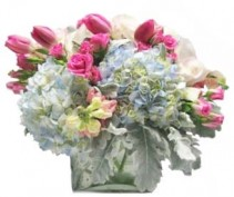 Tulip, Hydrangea, and Orchid Garden Cut Flowers