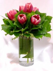TULIP MAGENTICS - Special Occasion Flowers Tulips and Flowers Prince George BC, Prince George BC Flowers,  Prince George BC Florists