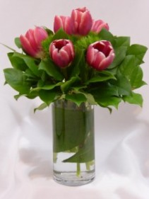 TULIP MAJESTICS- Tulips & Flowers  Special Occasion Flowers