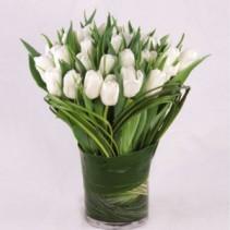 Tulip Simplicity Vase Arrangement