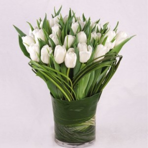 Tulip Simplicity Vase Arrangement in Fairfield, CT | Blossoms at Dailey's Flower Shop
