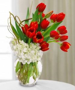 TULIP SPLASH  Valentines Day in Wilton Manors, FL | LA FLEUR FLORALS & EVENTS