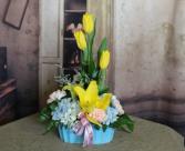 Tulip Surprise Medium