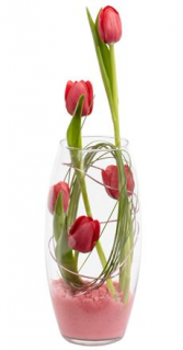 Tulip Swirl