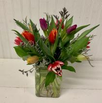 Tulip Time-12 stems