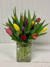 Tulip Time-20 stems