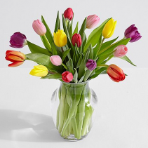 Tulip Treasure Arrangement