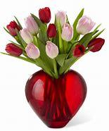 Tulip treasure Multicolored tulips