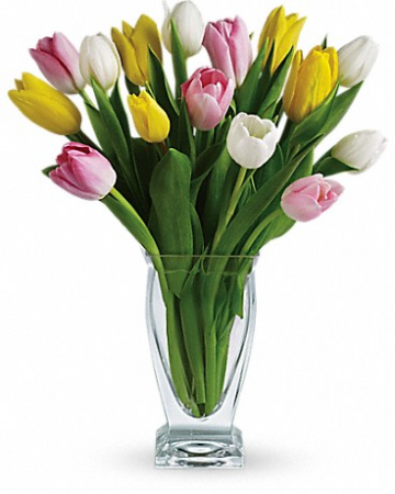 "Tulip Treasure T142-1 14""(w) x 17""(h)"