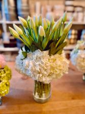Tulips anytime  Tulips