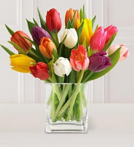 15 Mixed Tulips Arranged in a Vase *Seasonal, availability may be limited