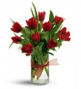 Tulips! Arrangement in Brentwood, Missouri | SISTERS FLOWERS & GIFTS