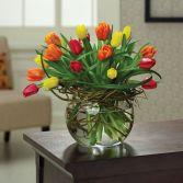 Tulips Entwined EN-1H