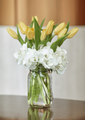 Tulips for MOM Arrangement