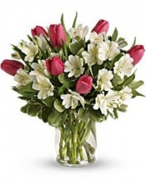 Tulips for Mom Select Colors