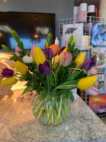 Tulips  Fresh arrangement