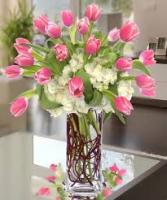 Tulips & Hydrangeas