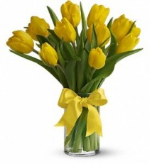 Mixed coloured Tulips in a vase Spring bouquet