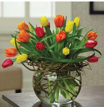 Tulips nest